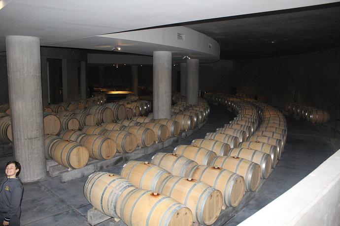 Cellars%20in%20Mendoza