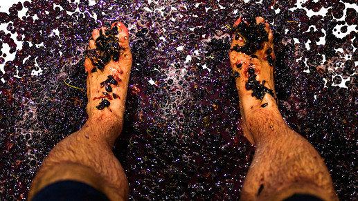 foot trodden clean image landscape
