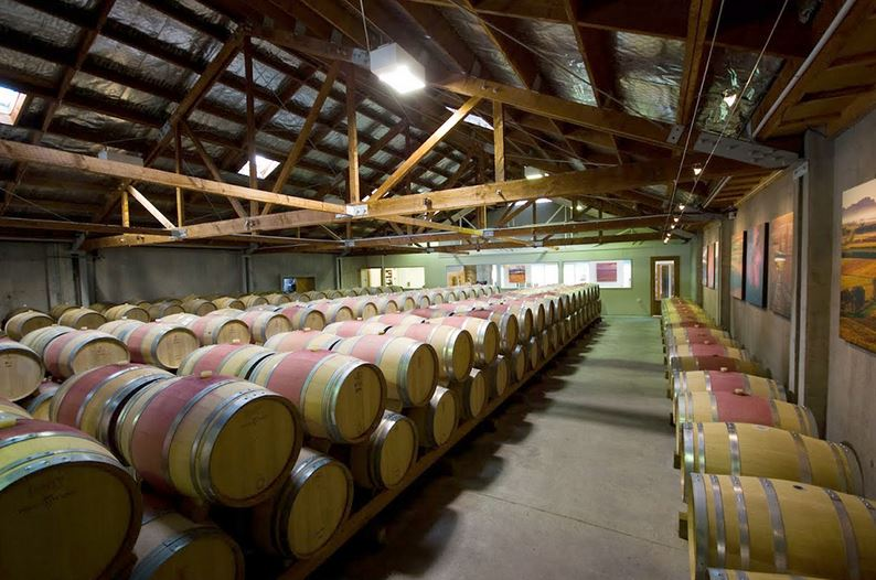 Cloudy%20Bay%20winery