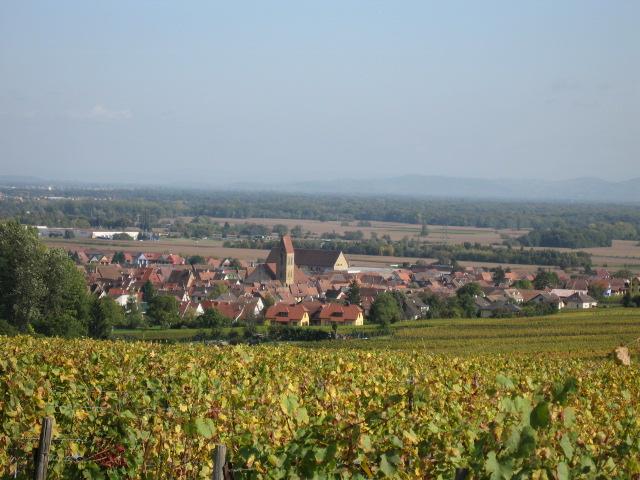 View%20over%20Eguisheim